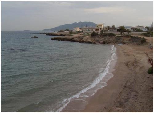 artemida 3 παραλίες αττικής