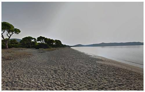sxoinias dasos koykoynaries παραλίες αττικής